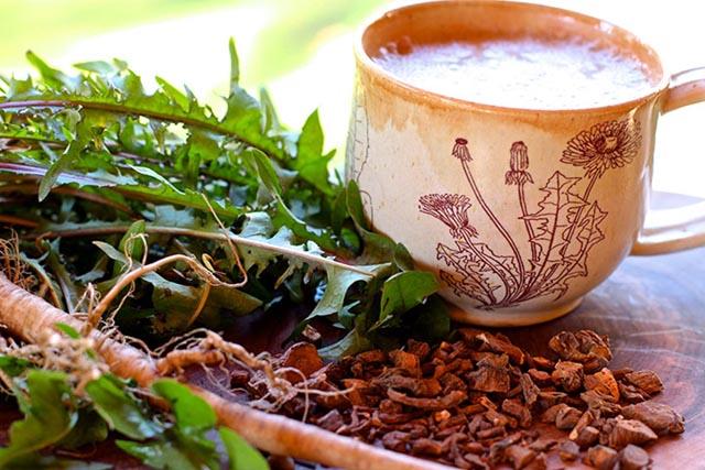 Hướng dẫn cách làm trà từ hoa và rễ cây Bồ Công Anh