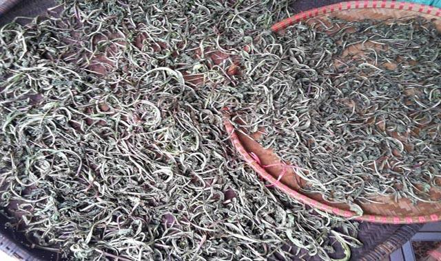 Lá cây Bồ Công Anh thấp khô
